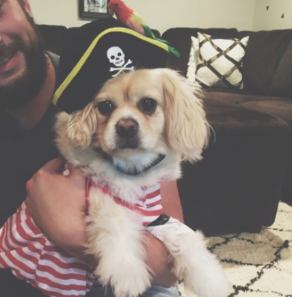 Deanna and CJ Watson's son, Toby, as a pirate!