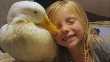 GIRL PET DUCK 2