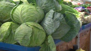 Leafy Greens Lettuce
