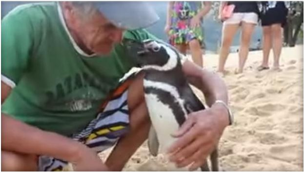 Joao Pereira de Souza embraces Dimdin, his best penguin friend.  GLOBO TV
