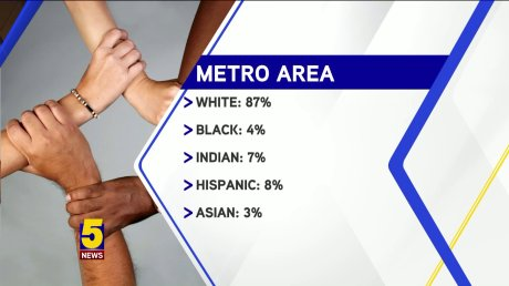 Metro Area Demographics