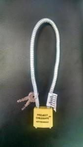 SS Gun Locks