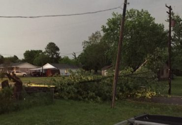 Tree down in Hackett on Vine Courtesy Debra Bowers