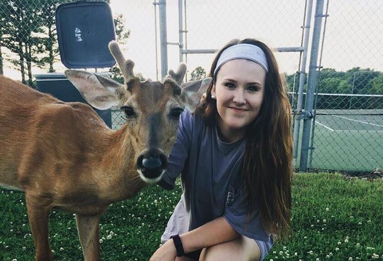 doug-deer2