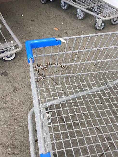 Walmart: Snake In A Basket