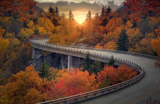Curvy autumn road