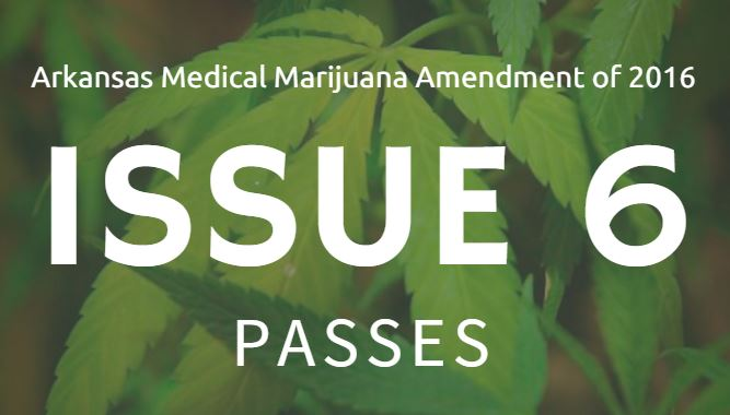 issue-6-passes