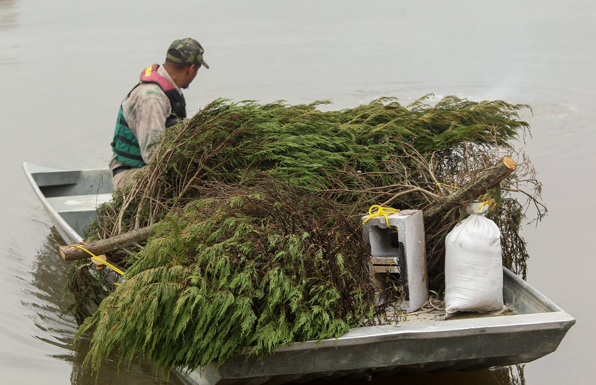 Arkansas Game And Fish Commission Accepting Leftover Christmas ...
