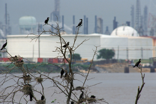 Houston, Texas, refinery
