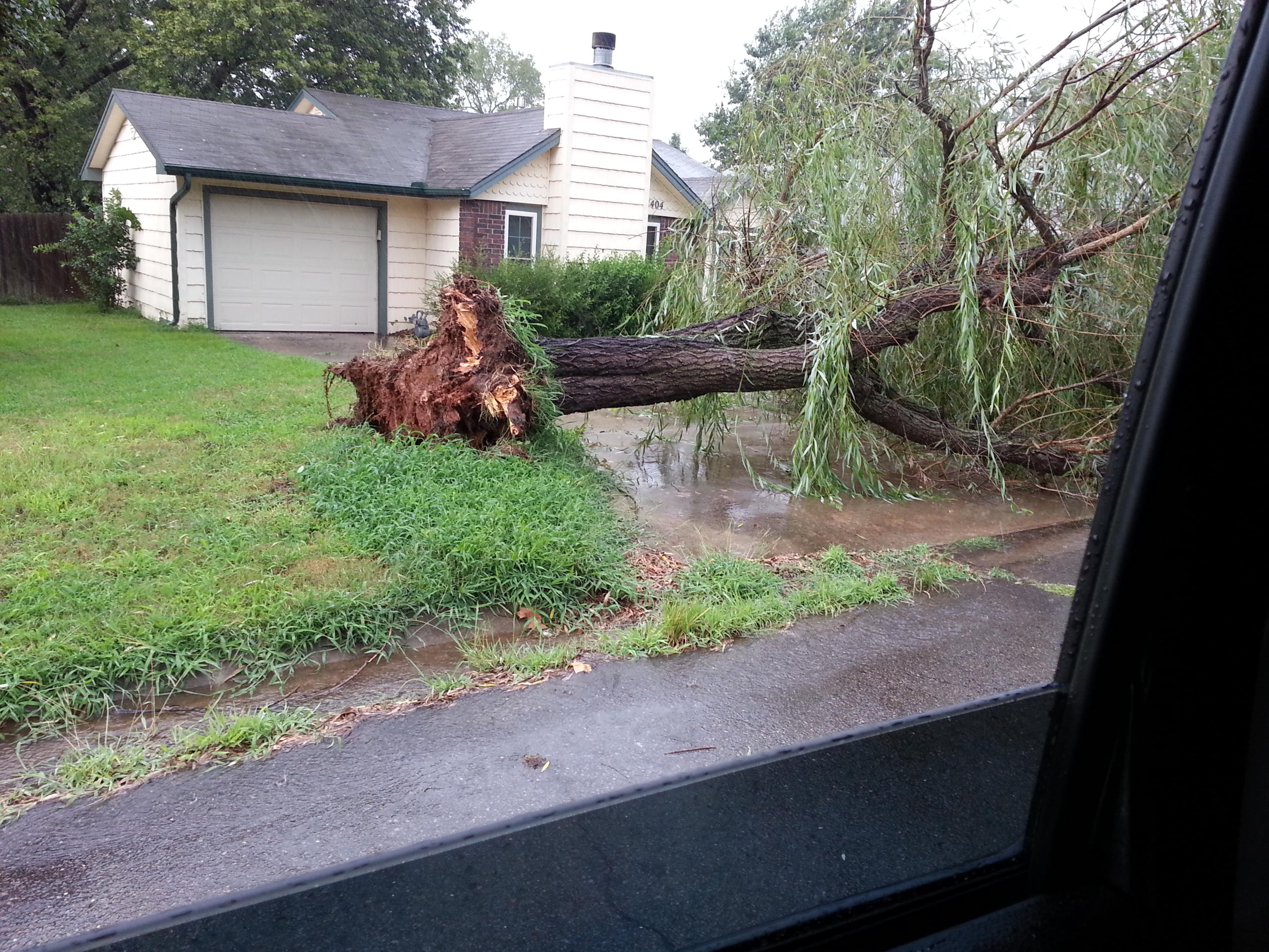 Van Buren, tree down. Courtesy Mike Brasuell