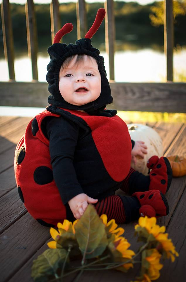Laney the lady bug. Photo by Lizzie Weisenfels.