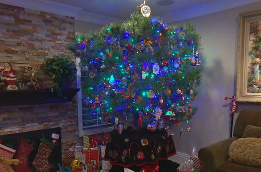 Meet The Family Who Kept Their Christmas Tree Alive For 34