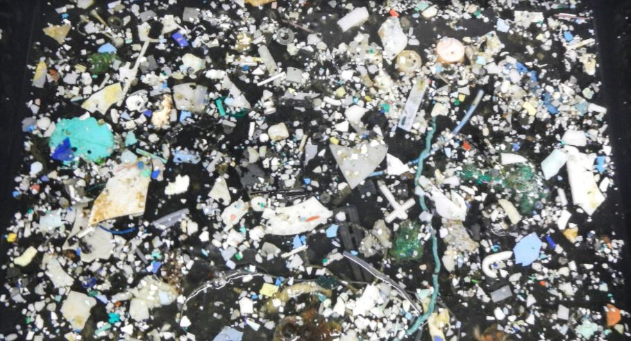 Great Pacific Garbage Patch: Sixteen times more plastic than previously estimated