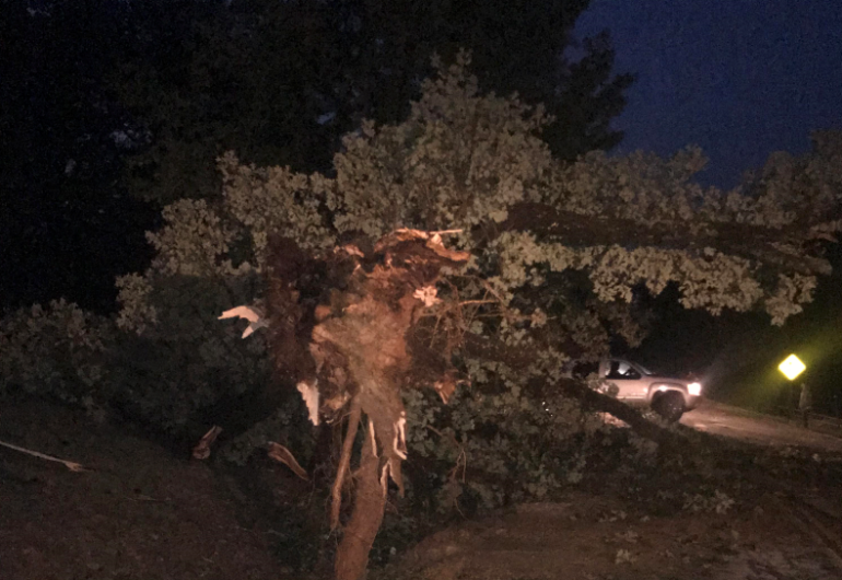 Microburst Causes Damage In Crawford County