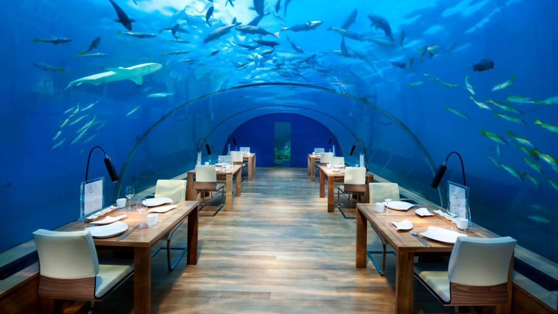 """""""We are excited to present Muraka's unique sleeping under the sea experience to our future guests, providing them with an extraordinary seascape of the Maldives from an entirely new perspective,"""" says a spokesperson for Conrad Maldives Rangali Island."""