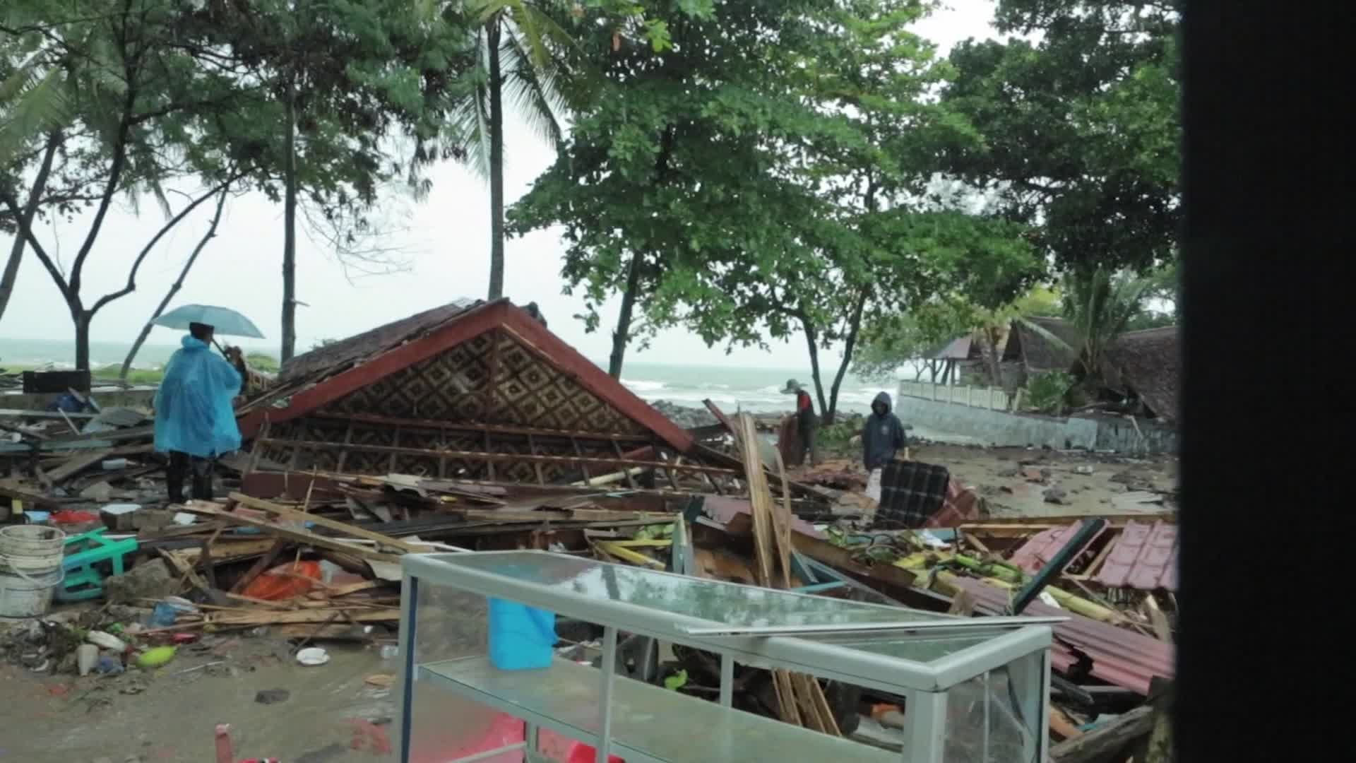 CNN footage of tsunami-hit areas in Indonesia show rescue team looking through debris and K9 unit dogs sniffing for survivors.