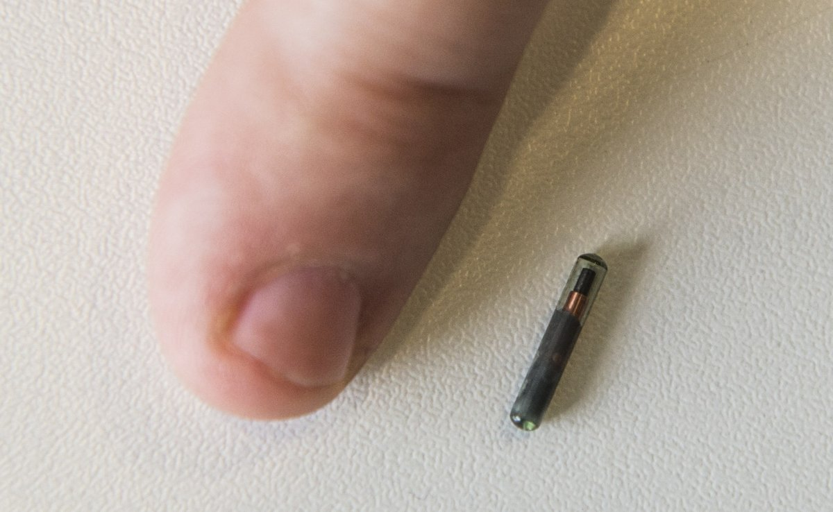 Arkansas House Votes To Ban Forced Microchipping Of Workers