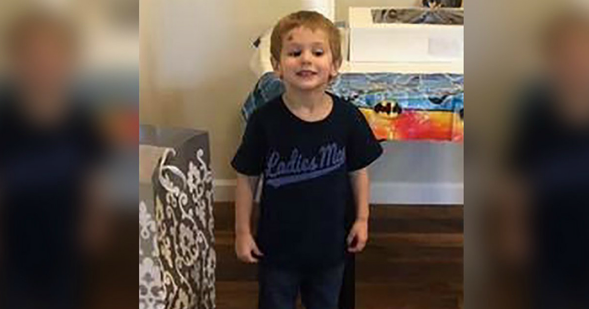 North Carolina Toddler Who Was Missing For 3 Days Says He 'Hung Out With A Bear
