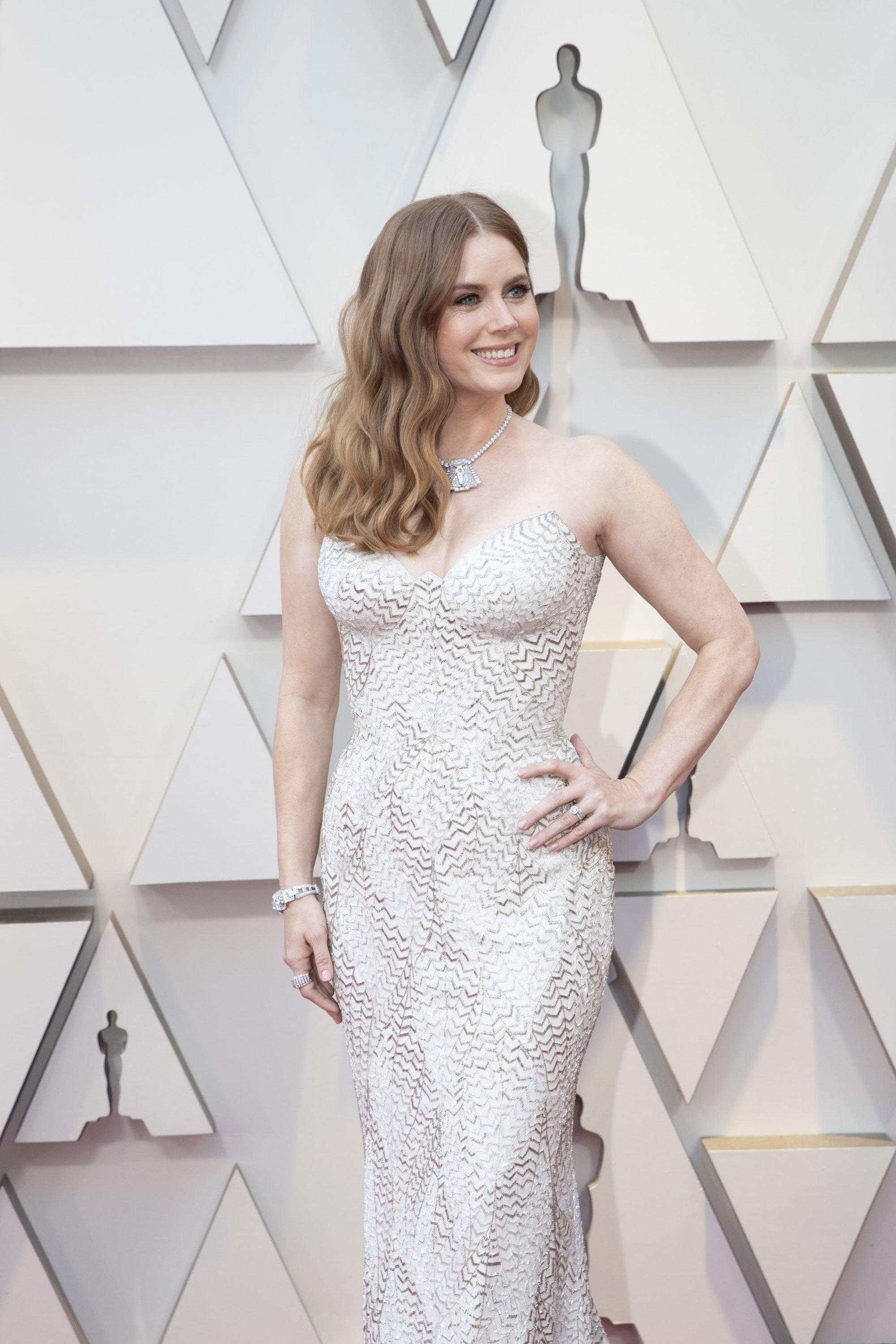 Amy Adams: Red Carpet from the The 91st Oscar broadcast on Sunday, Feb. 24, 2019, at the Dolby Theatre.