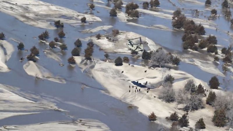 Military helicopters drop hay for cows stranded by Nebraska floodwaters thumbnail