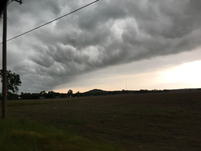 Courtesy Taylor Hutchins, Gore, OK.