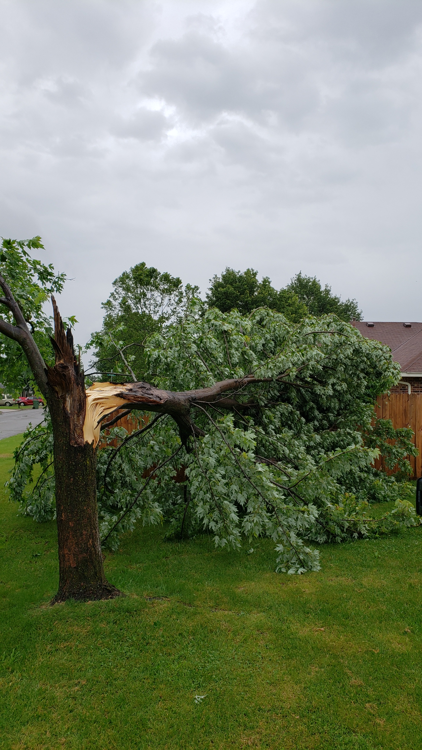 From the noon storms, 25th and Gum in Rogers (Courtesy of Christopher Vore)