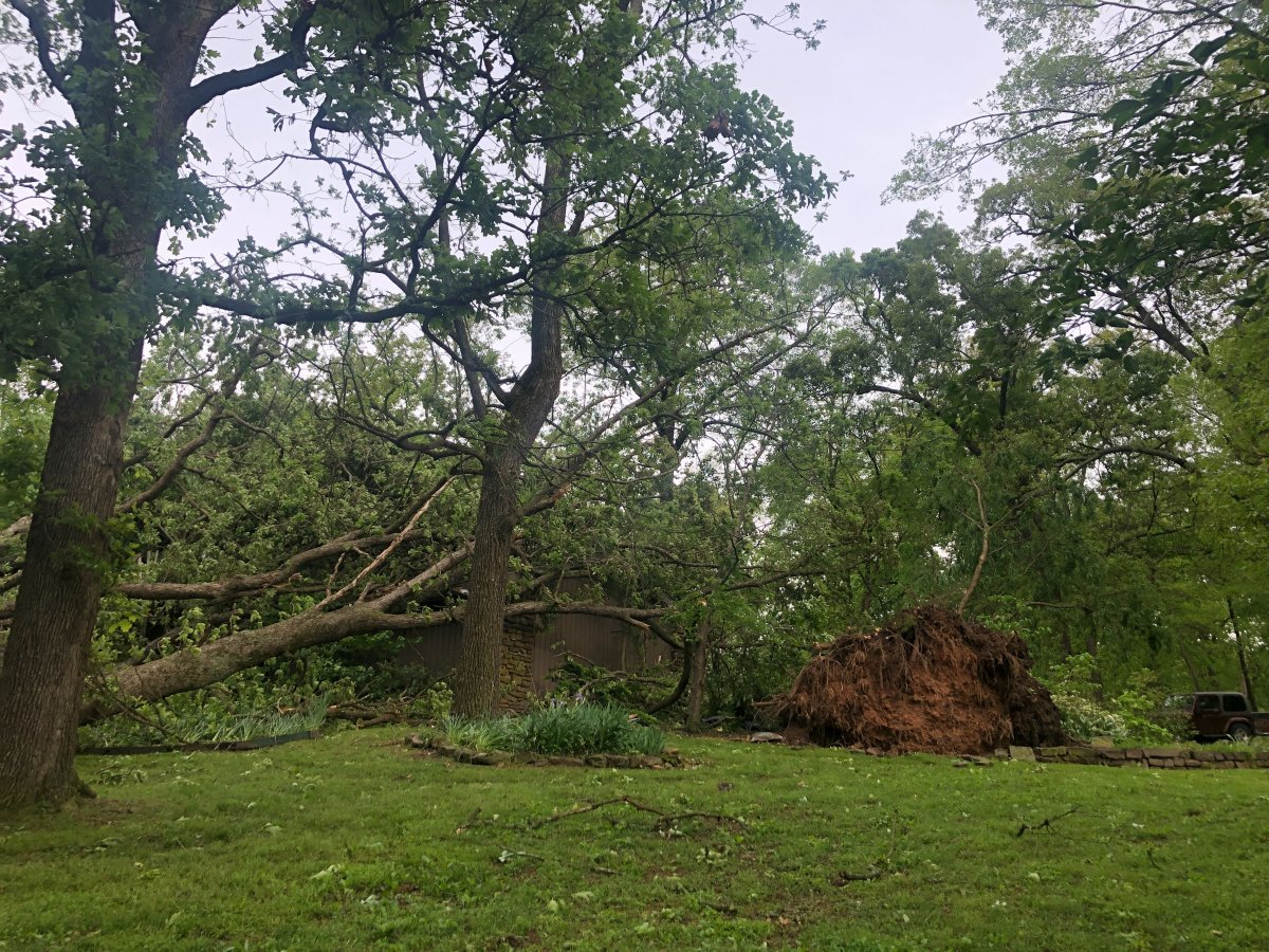 High Winds Down Trees, Damage Homes In Rogers, Cut Power Throughout Northwest Arkansas Overnight
