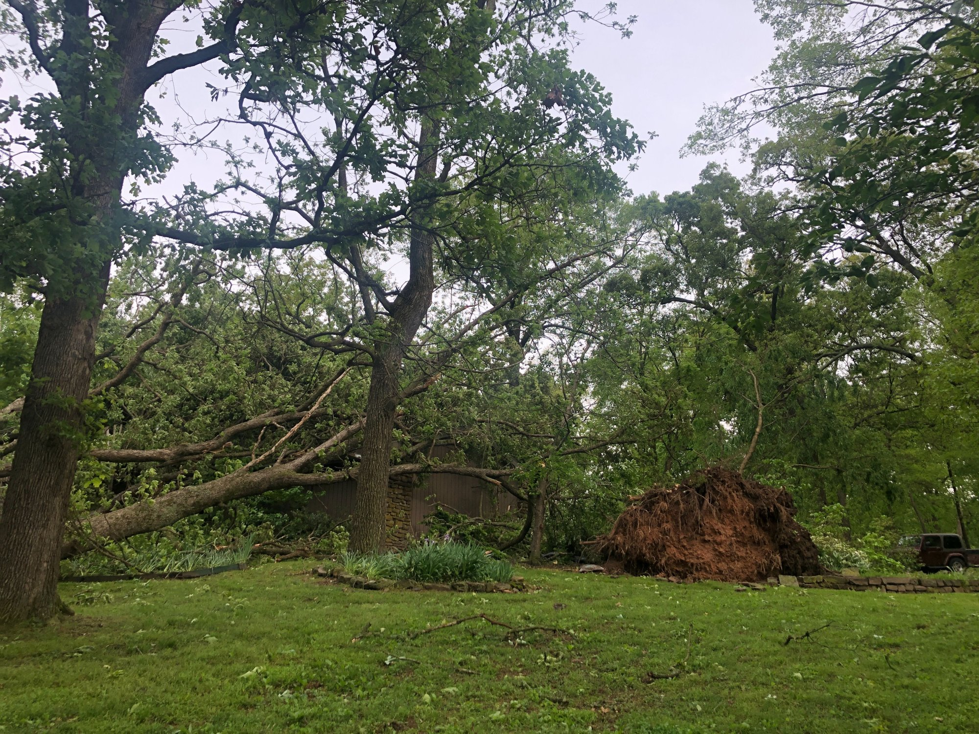 Trees damaged a home on Sunbridge Lane in Rogers after high winds blew through the area overnight May 2, 2019.