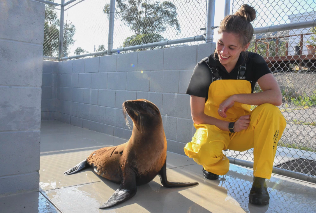 Isla and Zoo Trainer Sierra at Channel Islands Marine & Wildlife Institute. (Photo Courtesy: KFOR)