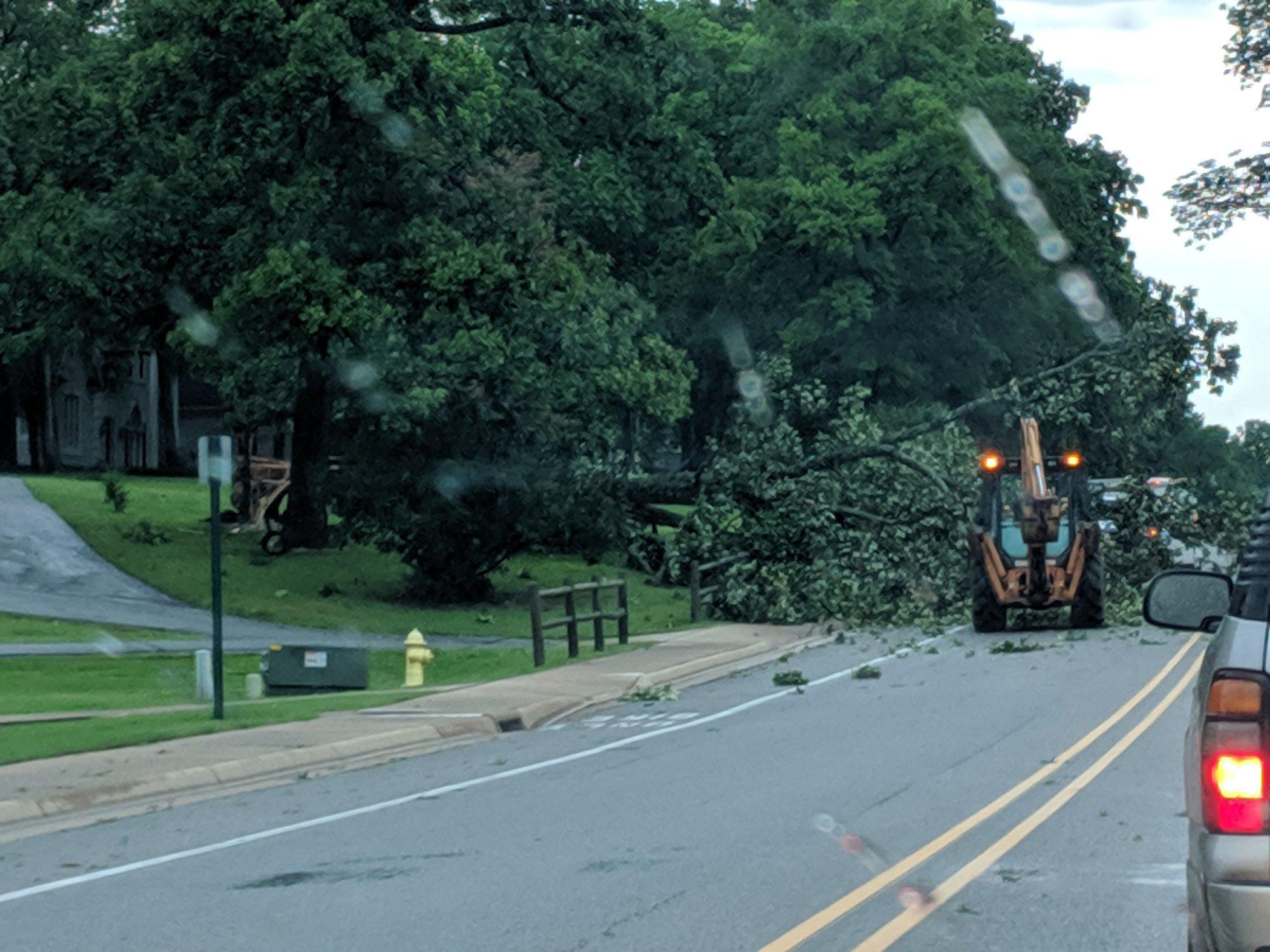 Tree damage on N. Dogwood St, near Cheri Whitlock Pkwy, Siloam Springs (Courtesy of Brian Smith)