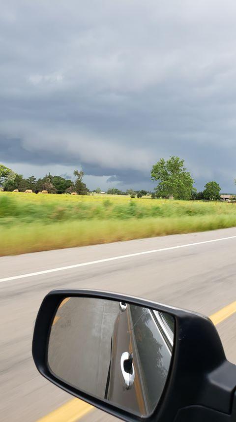 West of Morrison Bluff AR.