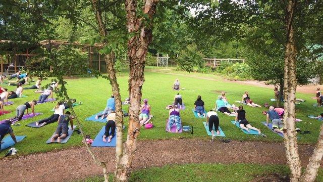 Adventure Arkansas: Yoga At The Botanical Garden Of The Ozarks