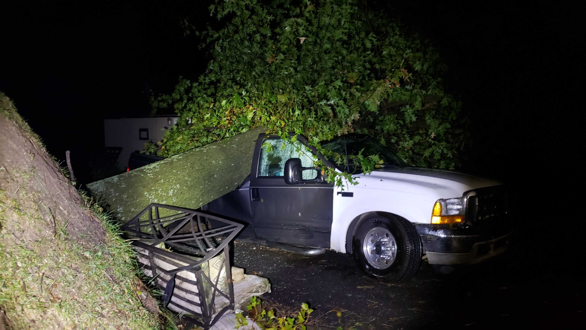 Tree on a vehicle on County Road 219 off Highway 264 in Siloam Springs.
