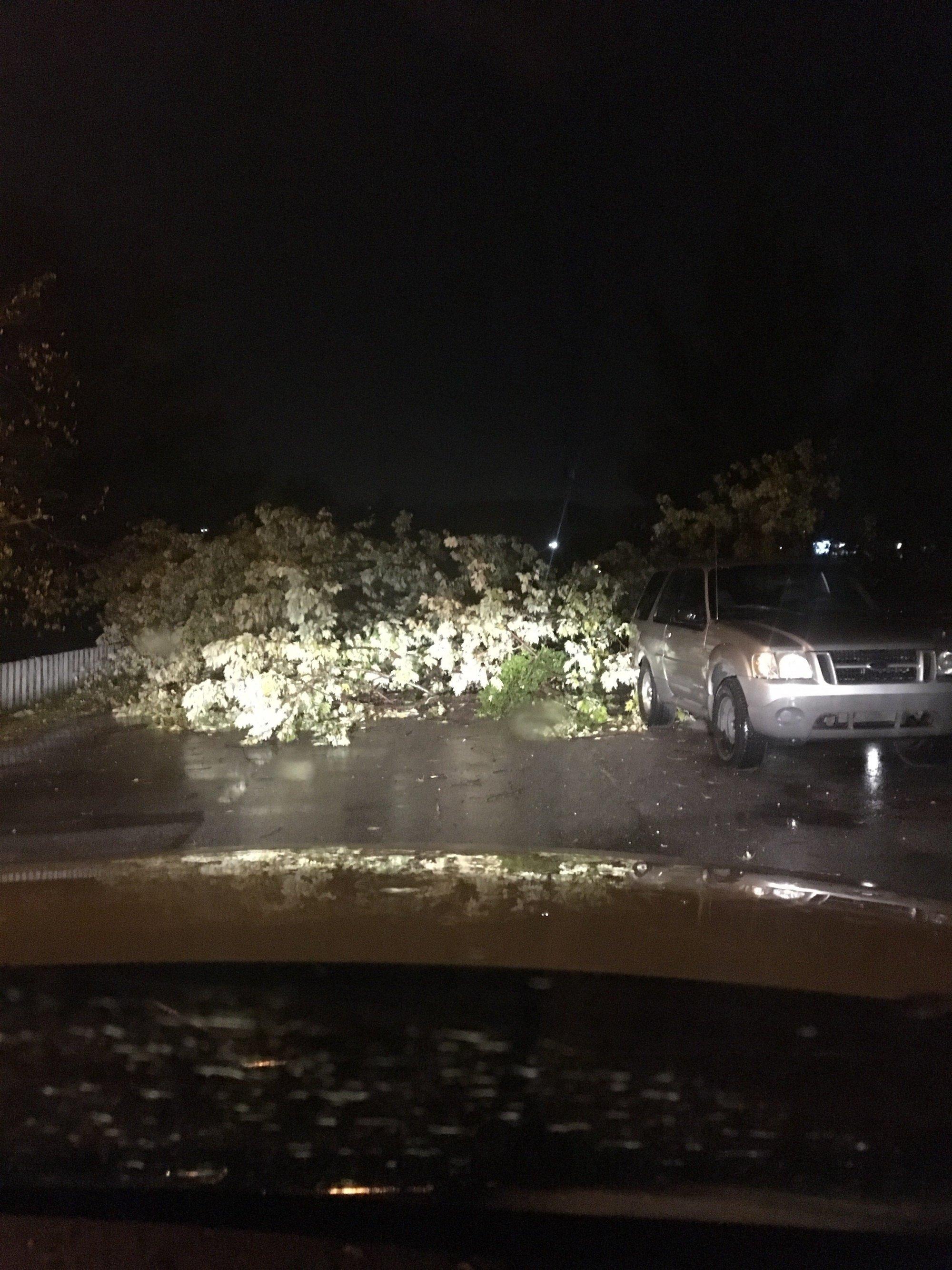 Wedington Drive, Fayetteville