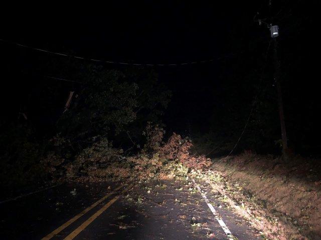 Debris, Downed Power Lines Prompt Road Closures In Benton County